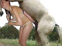 animal porno deutsch