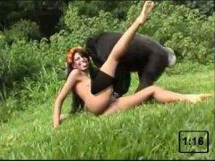 Movies animal sex xxx porn